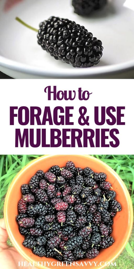 pin with photo of bowl of mulberries and title text