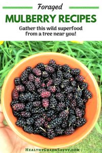 Mulberry recipes ~ pin with photo of bowl of mulberries and title text
