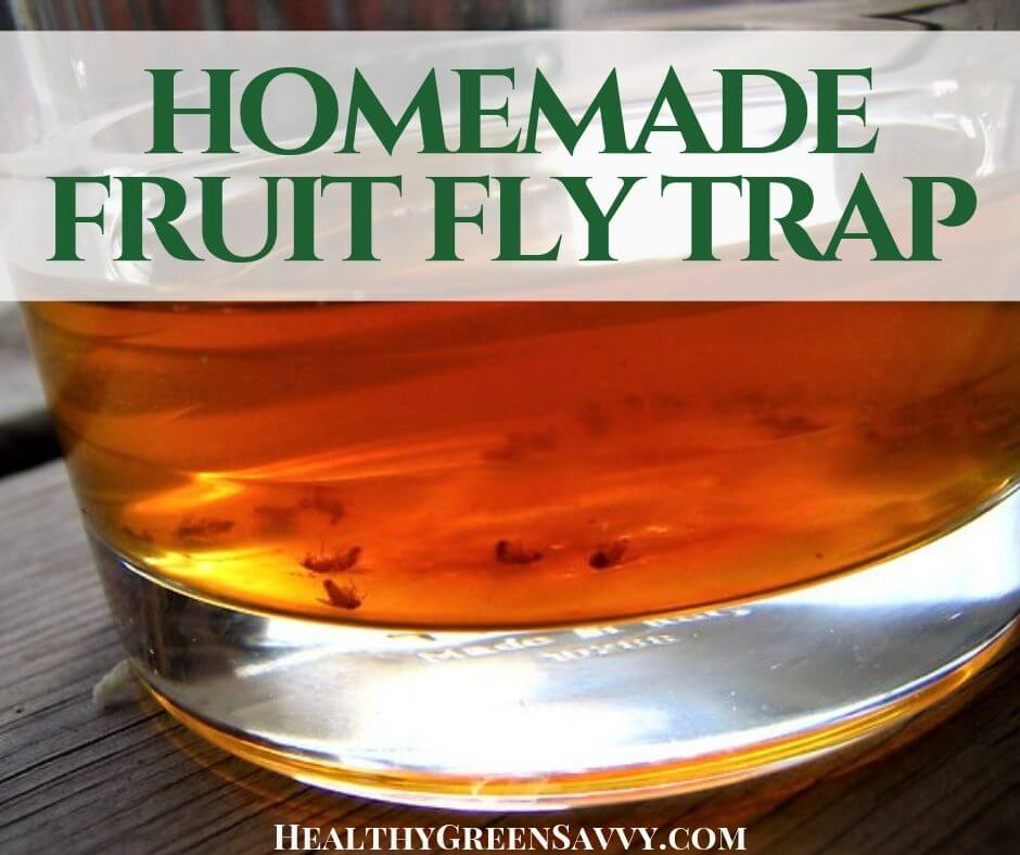 How to Get Rid of Fruit Flies with a Homemade Fruit Fly Trap