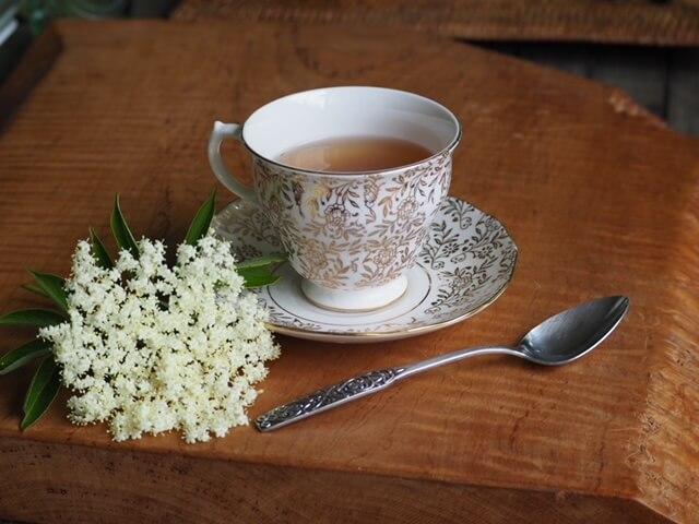 photo of tea cup with elderflower tea and small cyme of elderflowers