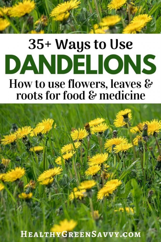 pin with title text and photo of dandelions growing in field