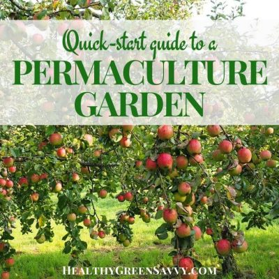 cover photo of apple tree with title text overlay