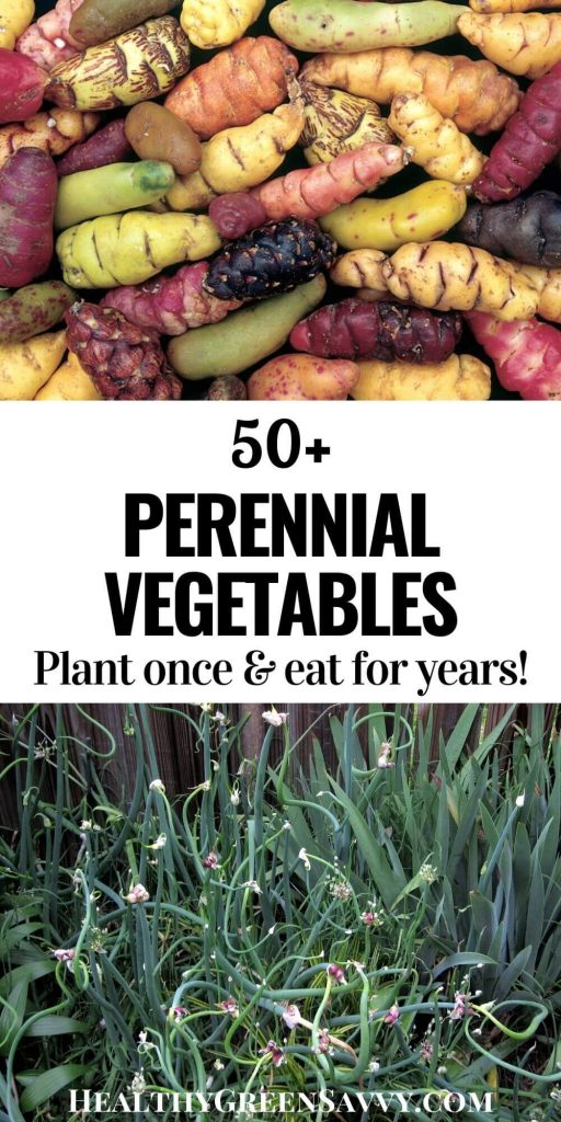 pin with photos of perennial vegetables oca and walking onions plus title text