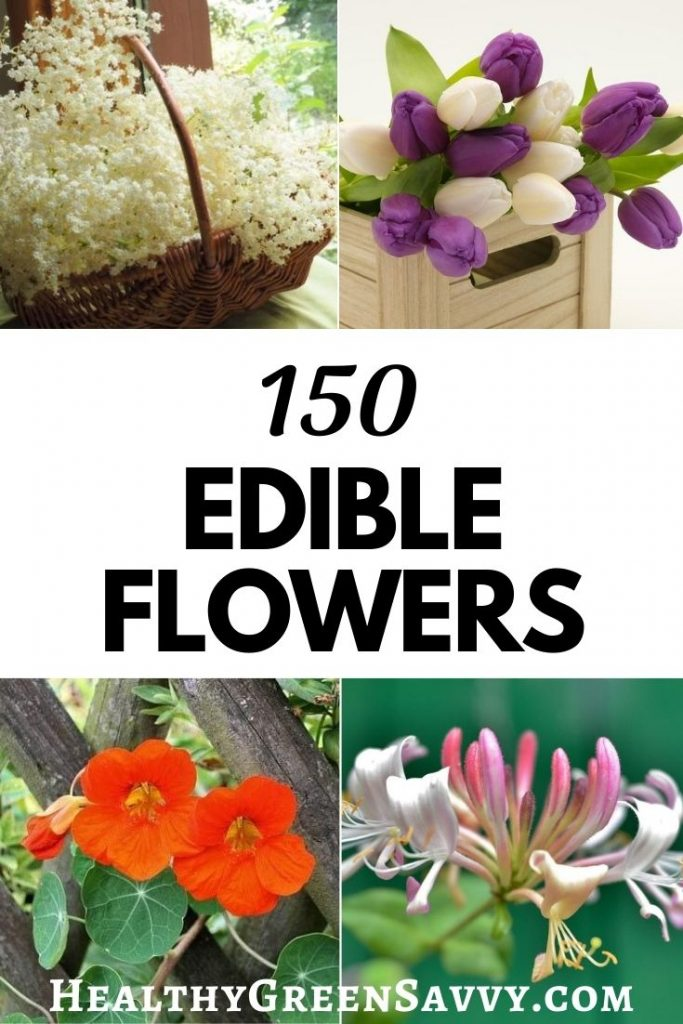 pin with title text and photos of several flowers you can eat: elderflower, tulips, nasturtium, and honeysuckle