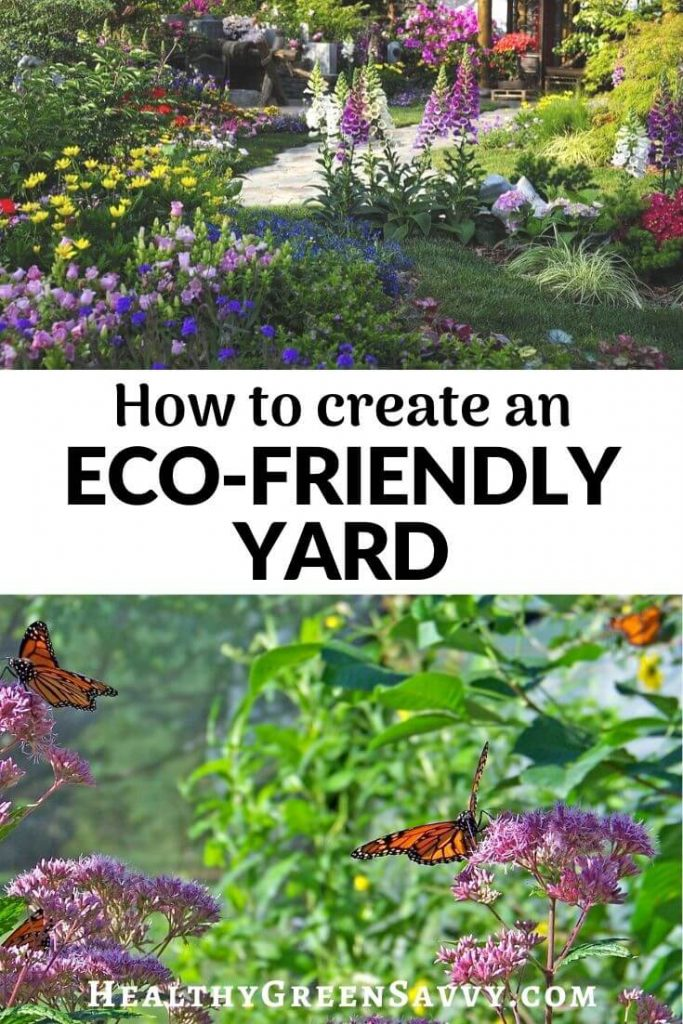 pin with photos of ecological landscpae in yard and butterflies around milkweed
