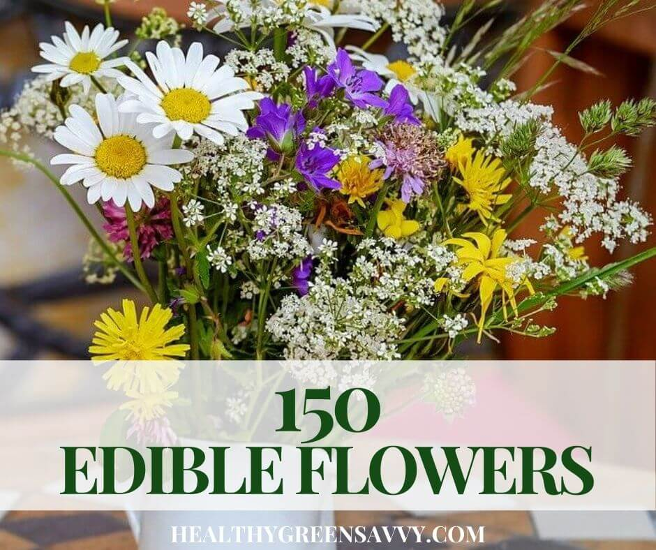 Flowers You Can Eat ~ 150 Edible Flowers to Try This Season