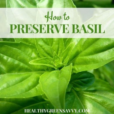 cover photo of basil leaves with title text overlay