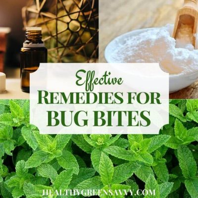 cover photo of home remedies for bug biteswith title text overlay