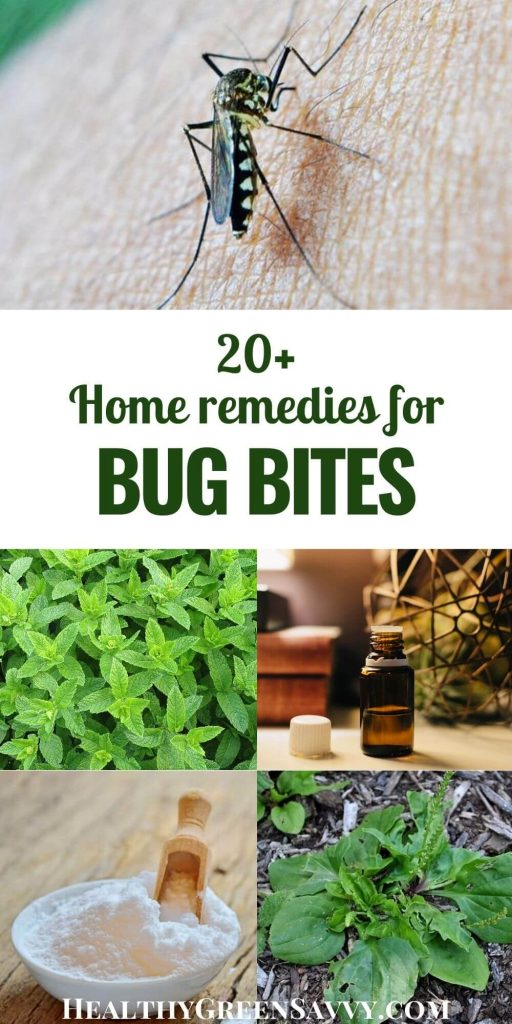 pin with title text and photos of home remedies for bug bites essential oil, baking soda, plantain, and peppermint