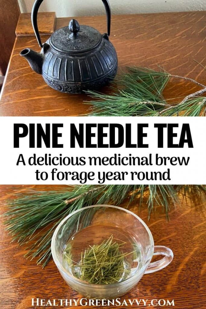 pin with photos of pine needle tea brewing in teapot and glass cup