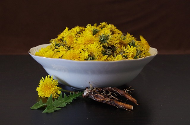 photo of bowl of dandelion flowers, with leaves and roots Ajale