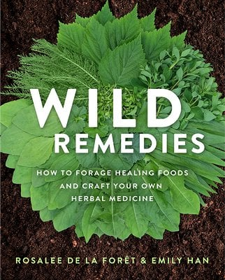 photo of cover of Wild Remedies, a top choice for the herbal medicine book shelf