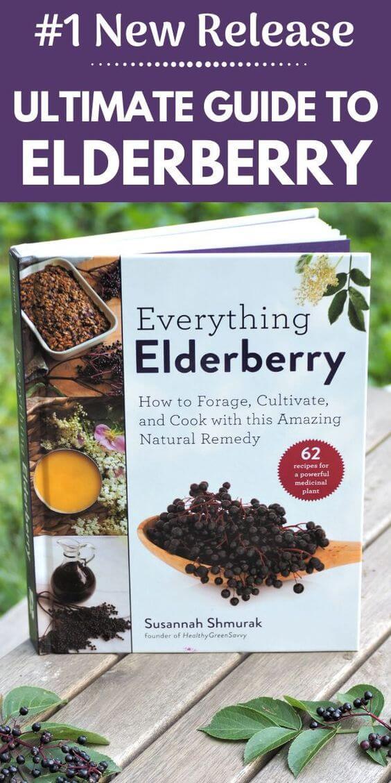 Red Elderberry, Red Berried Elder, Sambucus Racemosa