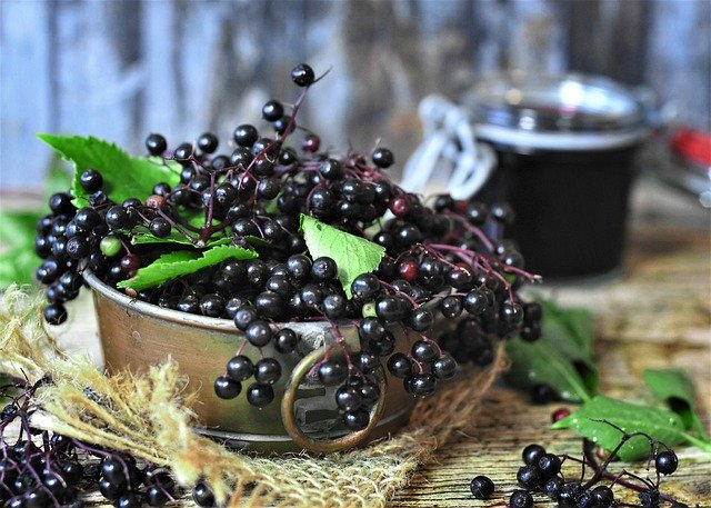 photo of elderberries and elderberry syrup, an effective natural remedy for cough