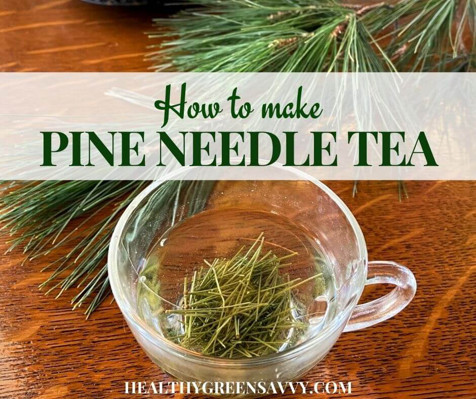 How to Make Pine Needle Tea (& Why You'd Want to)