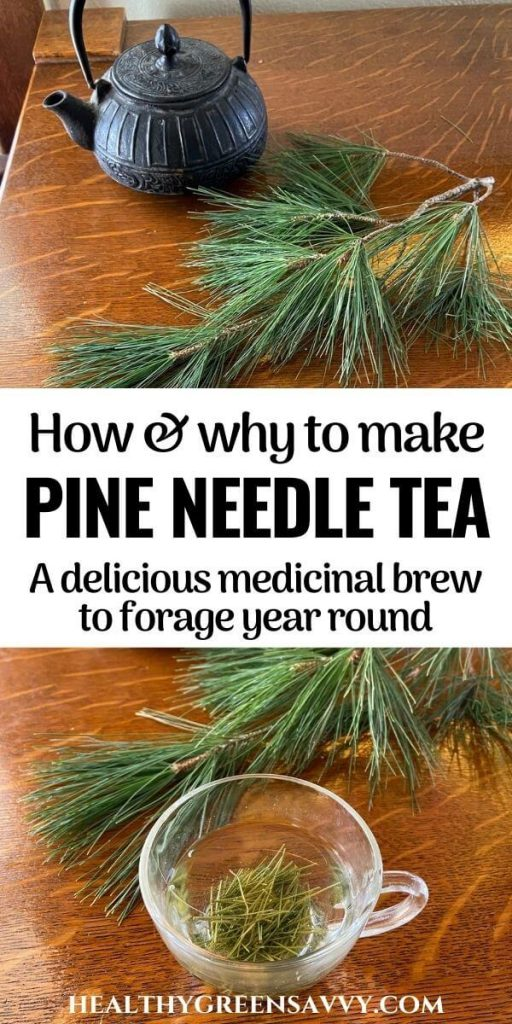 pin with photos of pine needle tea brewing in metal teapot and glass cup with title text overlay