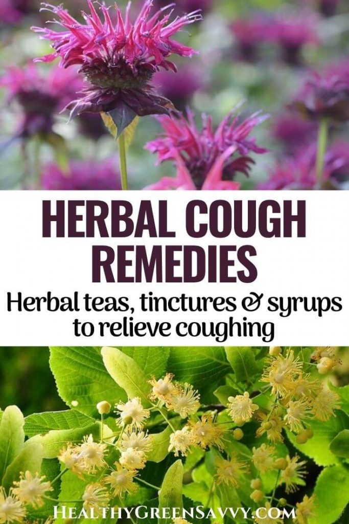 pin with collage and photos of herbs for cough bee balm and linden plus title text