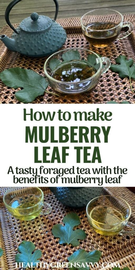 pin with photos of cups of mulberry tree leaf tea on tray with fresh mulberry leaves plus title text overlay