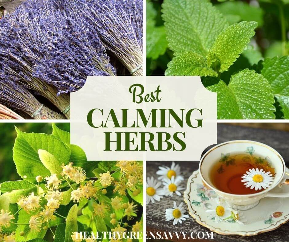 cover photo collage of calming herbs for relaxation: lavender, lemon balm, linden, and chamomile