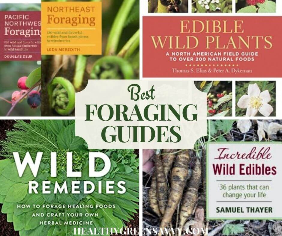 cover collage of four foraging books plus title text
