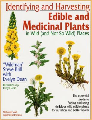 photo of foraging book, Edible and Medicinal Wild Plants by Steve Brill